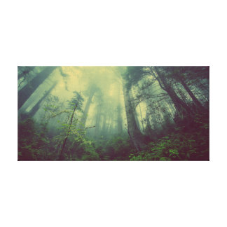 Misty Forest Canvas