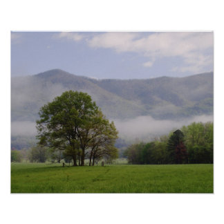 Misty meadow and Rich Mountain, Cades Cove, Poster