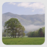 Misty meadow and Rich Mountain, Cades Cove, Square Sticker