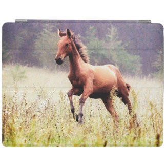 Misty Morning Frolick Horse Photography iPad Cover