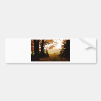 Misty Morning in the Country Bumper Sticker
