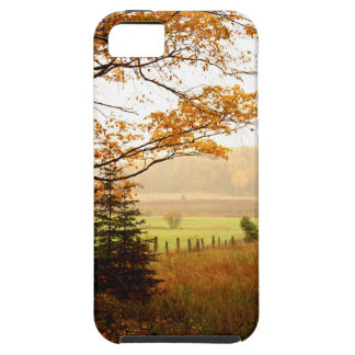 Misty Morning in the Country iPhone 5 Cases