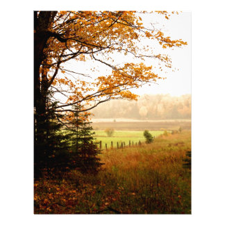 Misty Morning in the Country Letterhead