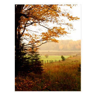 Misty Morning in the Country Postcard