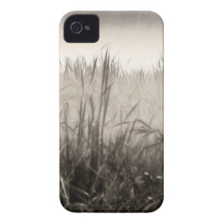 Misty Morning iPhone Case iPhone 4 Cases