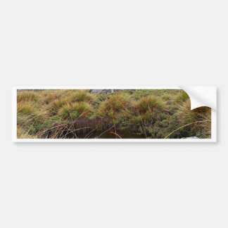 Misty morning reflections, Tasmania, Australia Bumper Sticker