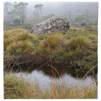 Misty morning reflections, Tasmania, Australia Napkin