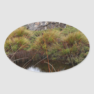 Misty morning reflections, Tasmania, Australia Oval Sticker
