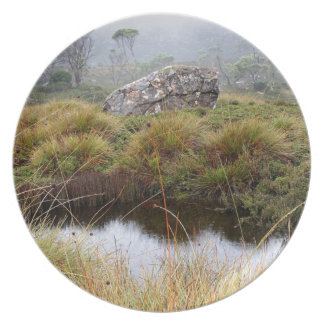 Misty morning reflections, Tasmania, Australia Plate