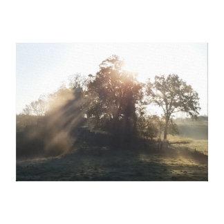 Misty Mornings Canvas Print