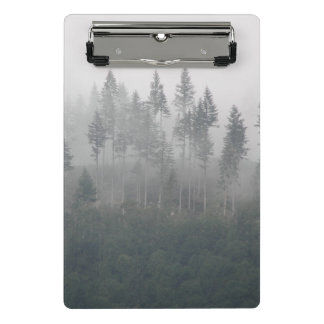 Misty Pines Photo