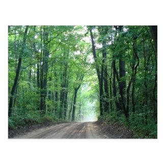 Misty Road Postcard