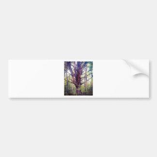 Misty Tree Bumper Sticker