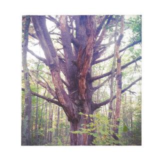 Misty Tree Notepad