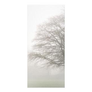 Misty Tree Rack Card