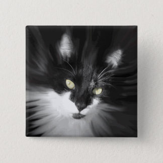 Misty Tuxedo Cat 2 Inch Square Button