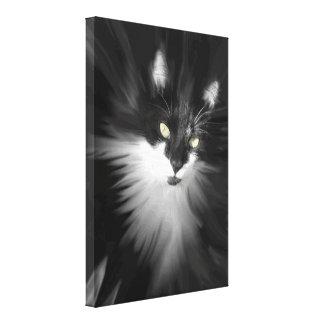 Misty Tuxedo Cat Canvas Print