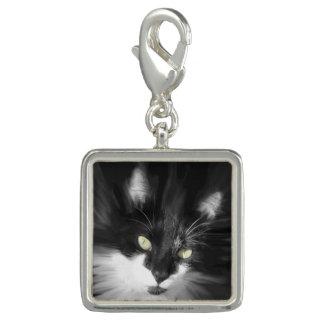 Misty Tuxedo Cat Charm