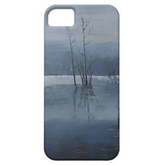 Misty water iPhone 5 case
