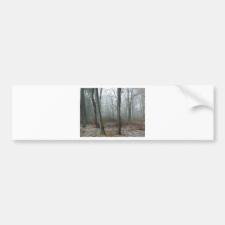 Misty Wood Bumper Sticker
