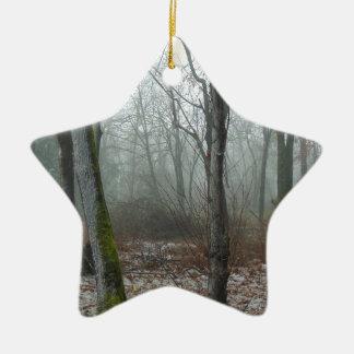 Misty Wood Ceramic Ornament