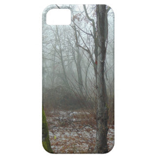 Misty Wood iPhone 5 Cover