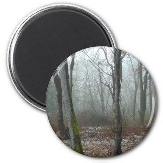 Misty Wood Magnet