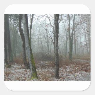 Misty Wood Square Sticker