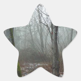 Misty Wood Star Sticker