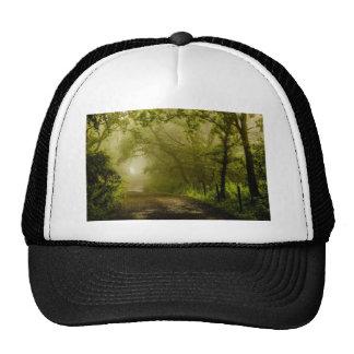 Misty Woodland Lane Trucker Hat