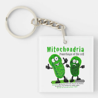 Mitochondria Powerhouse of the Cell Keychain