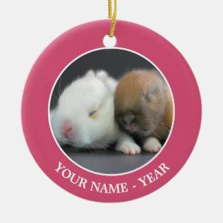 Mix breed of Netherland Dwarf Rabbits Ceramic Ornament