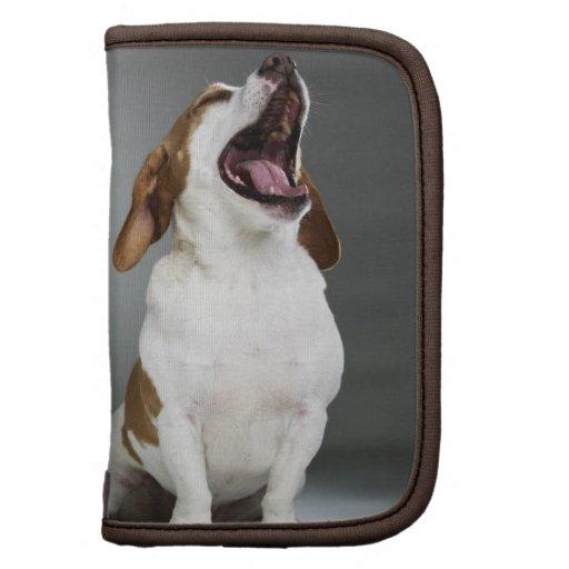 Mixed breed dog yawning folio planners