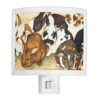 Mixed Company - Baby Rabbits Nightlite Nite Lite