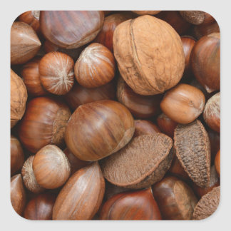 Mixed nuts square sticker