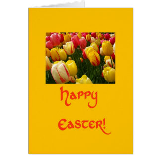 mixed tulips yellow easter greeting greeting cards