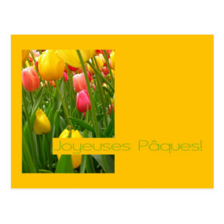 mixed tulips yellow easter greeting - french post cards