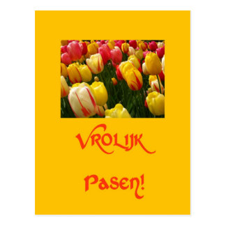 mixed tulips yellow easter greeting in dutch post cards