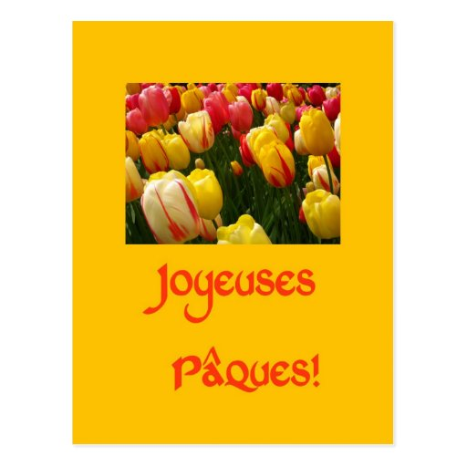 mixed tulips yellow easter greeting in French Post Card
