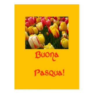 mixed tulips yellow easter greeting in italian postcards