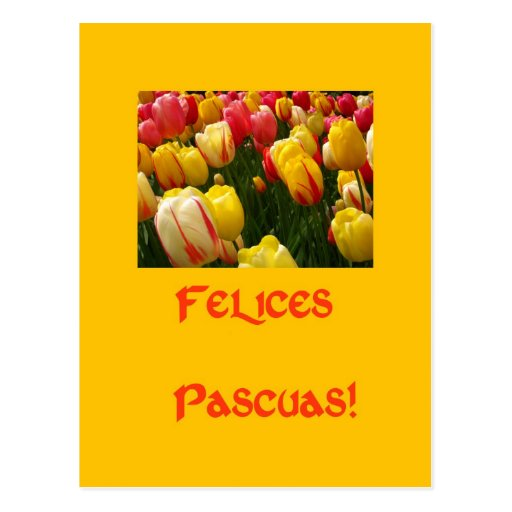 mixed tulips yellow easter greeting in spanish postcard
