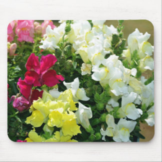 Mixture of Snapdragons Mouse Pad