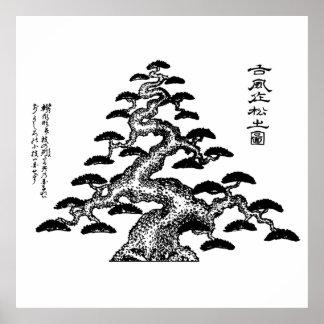 "Mizuno Chukyo The ""classic"" pine Bonsai Poster"
