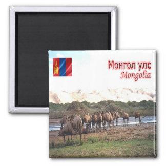 MN - Mongolia - Khongoryn Els Camels Magnet