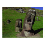 Moai on Easter Island (Rapa Nui) Postcard