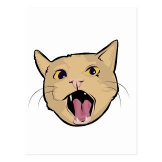 MOAR cat Postcards
