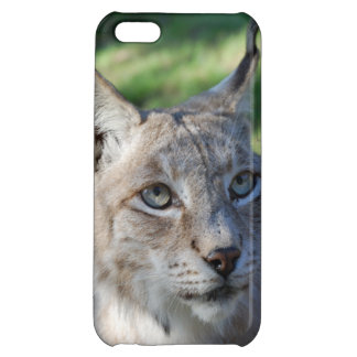 Mobile Lynx Smartphone lynx iPhone 5C Covers