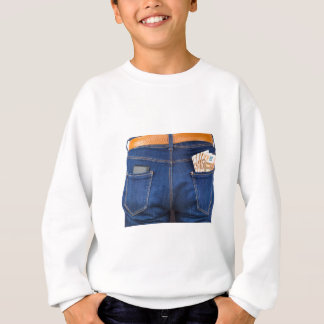Mobile phone and euro money in blue jeans sweatshirt