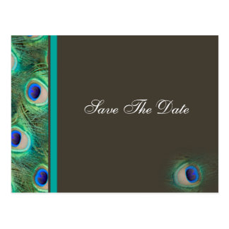 mocha peacock  Save the Date Postcard