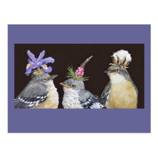 Mockingbird family postcard
